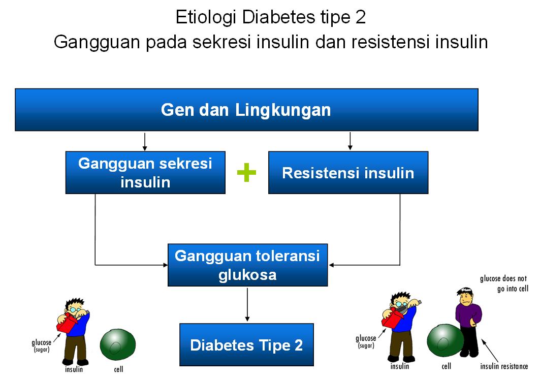 Peran Farmasis Dalam Manajemen Diabetes Mellitus Dm Hisfarsi Diy